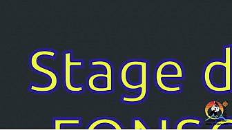 Ligue FFAB Aïkido Midi-Pyrénées : Stage de rentrée au club de Fonsorbes(31) #Aikido #Fonsorbes #Stages