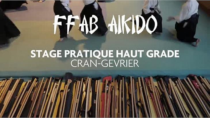 Aïkido :  Stage national de pratique hauts gradés  FFAB